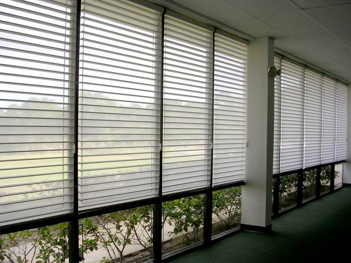Automated Lighting System Shades